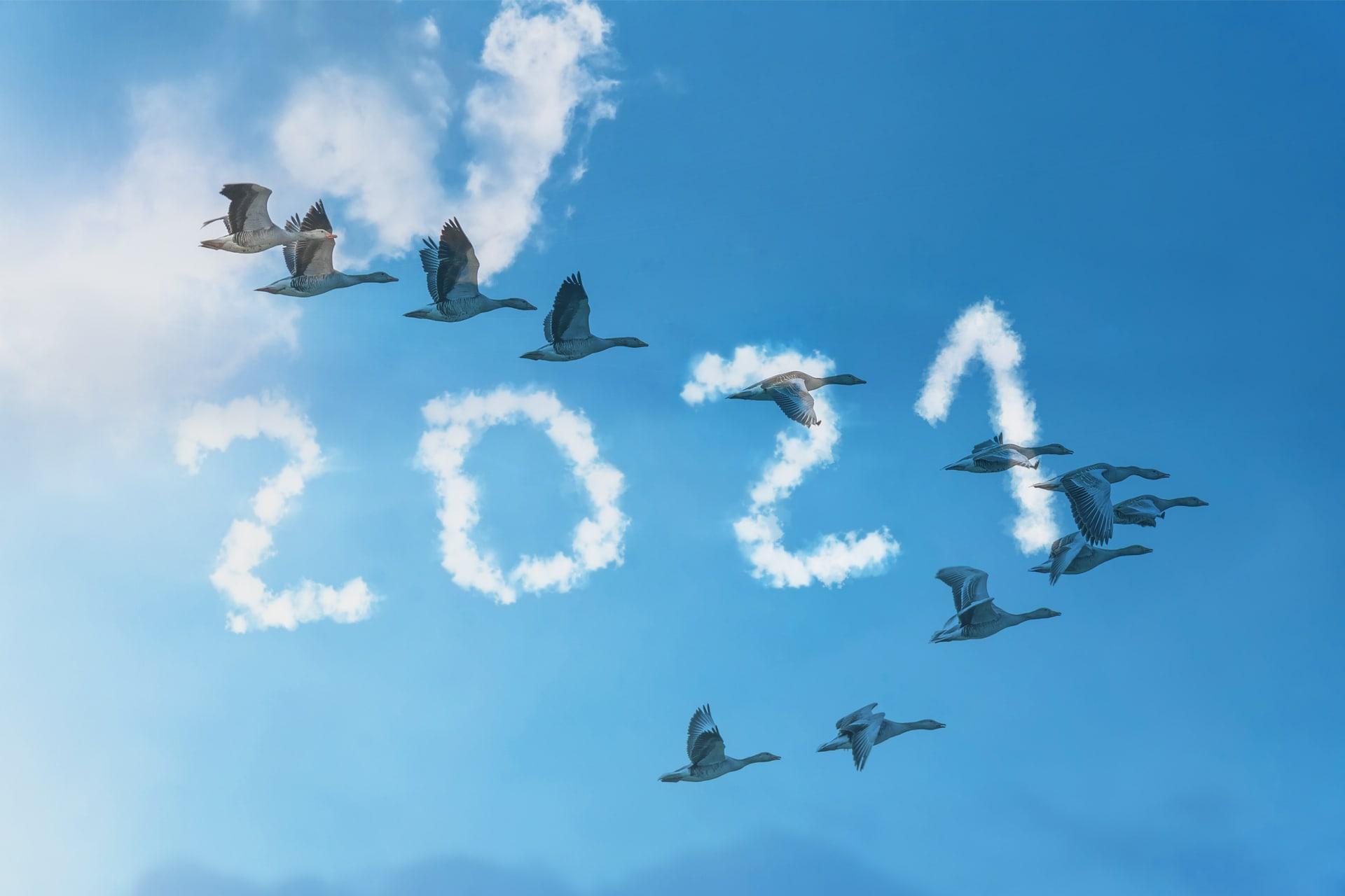 Flying Geese 2021