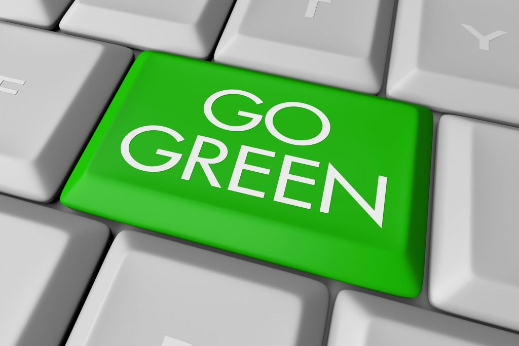Can My Company Afford to Go Green